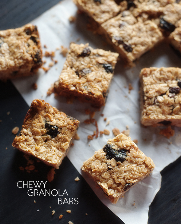 chewy granola bars | pretty plain janes