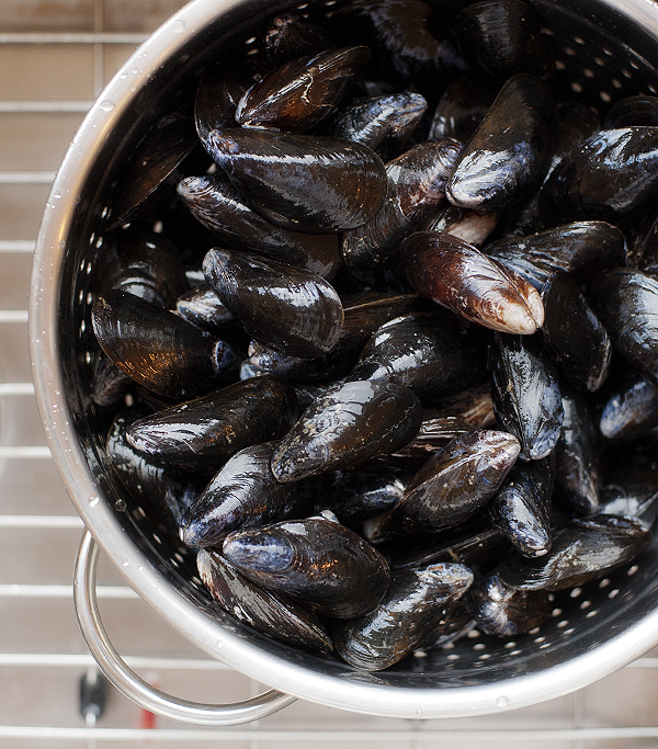 mussels in tomato wine broth